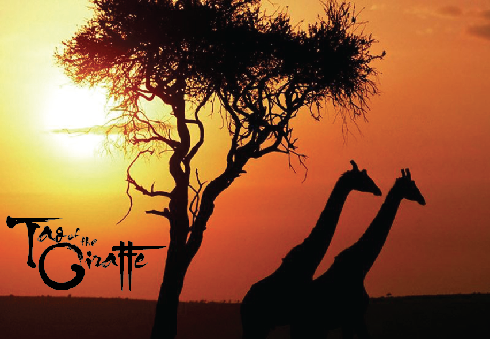 Tao of the Giraffe (sunset)